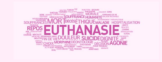 dissertation euthanasie