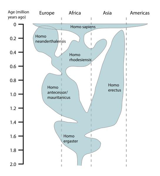evolution du genre humain