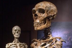 homme-neandertal-